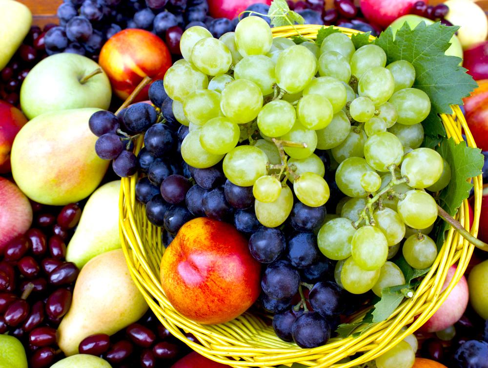 organic bio fruits