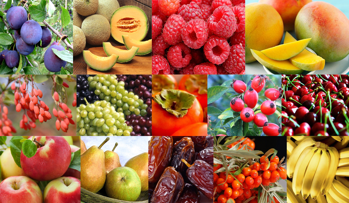 fruits sattva