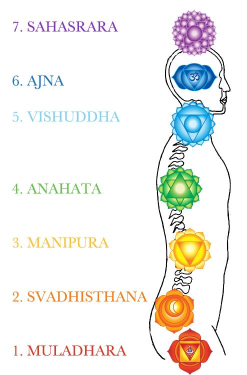 Extrêmement Chakras et micro-chakras : Yoga&Vedas HT22