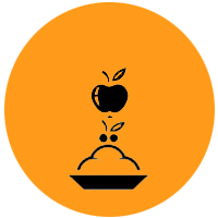 fruits combinaison alimentaire yoga&vedas