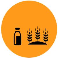 lait cereales combinaison alimentaire yoga&vedas